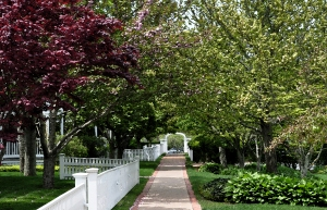 The Garden Walk