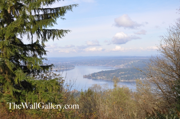 Cougar Mountain Reserve Overlook