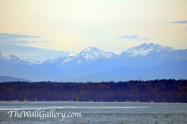 The Olympic Peninsula