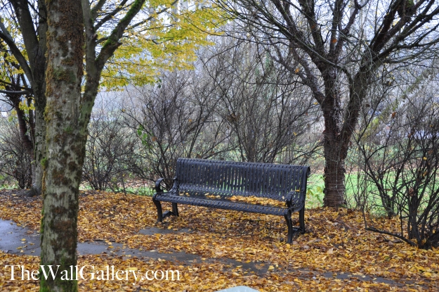 The Bench Picture 2