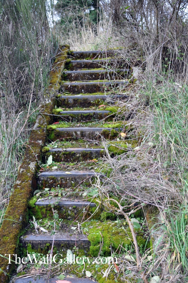 The Moss Stairs Two