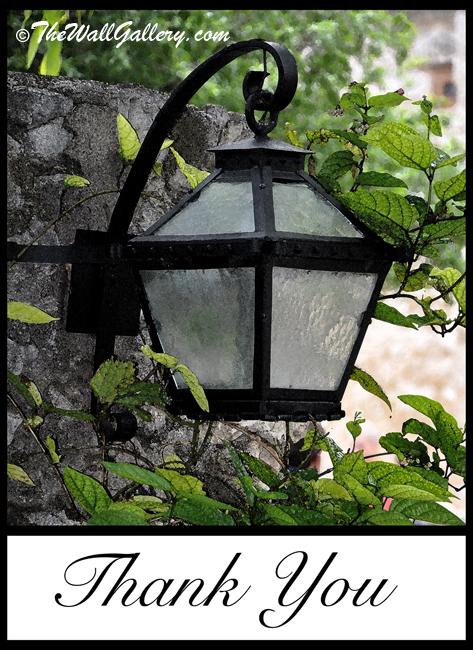 The Garden Light