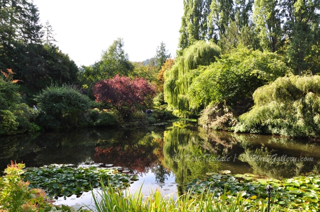 Butchart Gardens One