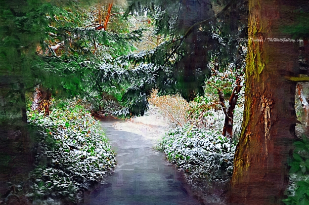 1st Snow Fall #4