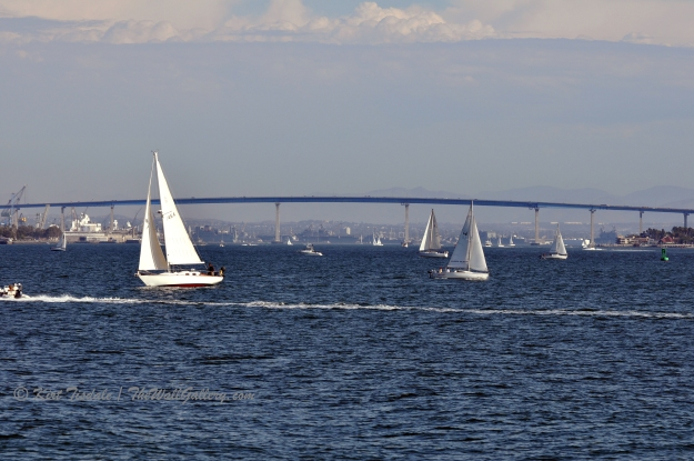 Sailboat 3