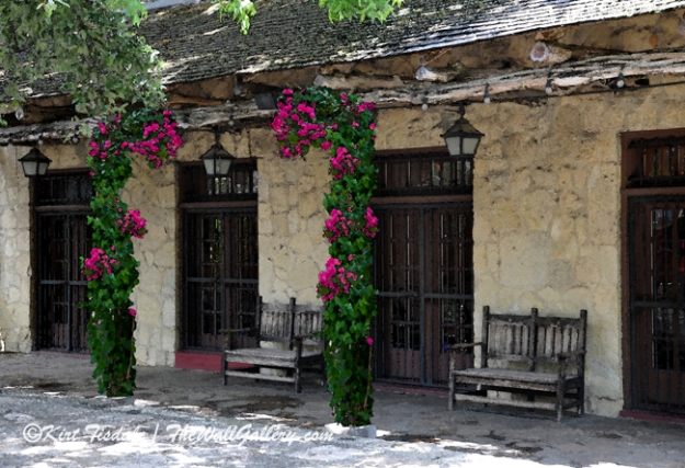 The Alamo Adobe with Bougainvillea