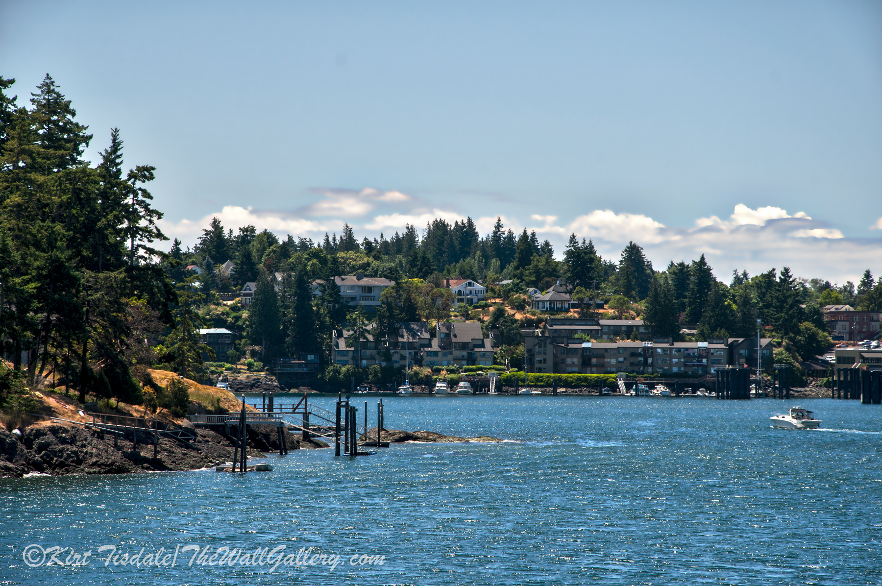 Friday Harbor 4