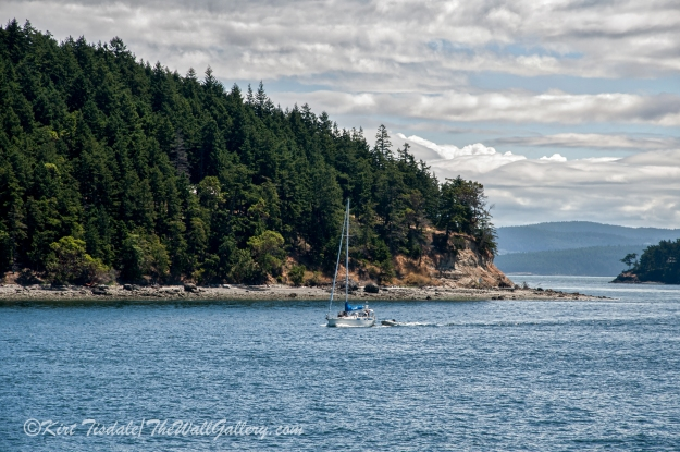 Friday Harbor 3