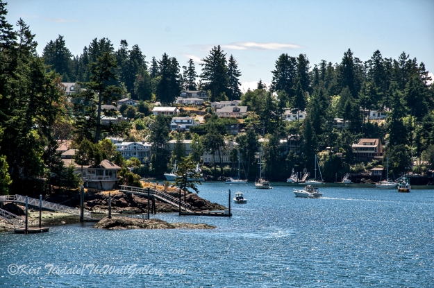 Friday Harbor 5