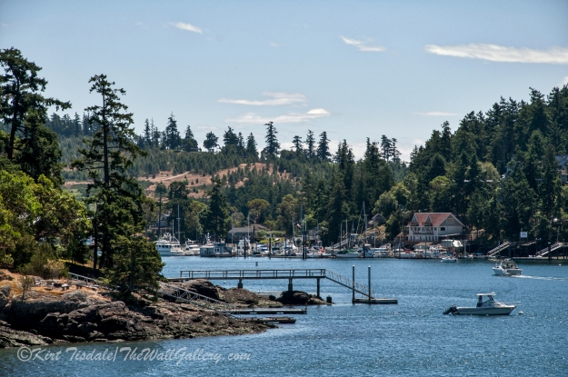 Friday Harbor 6