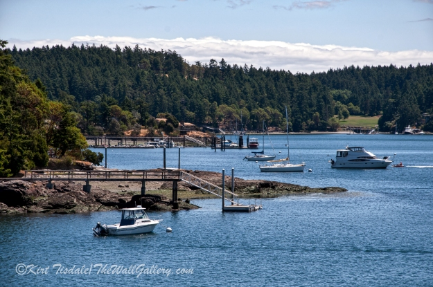 Friday Harbor 7