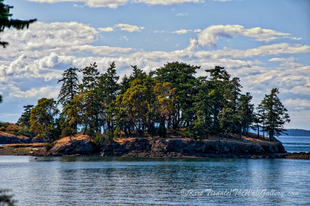 Henry Island 2