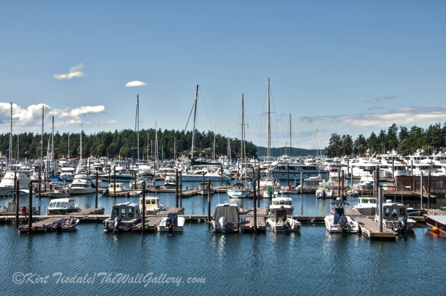 Roche Harbor 1