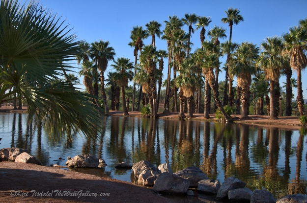Papago Pond 1
