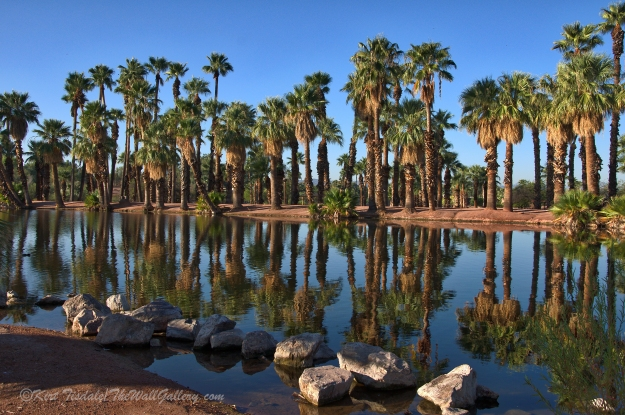 Papago Pond 2