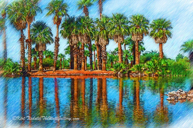 The Pond At Papago Park Sketched