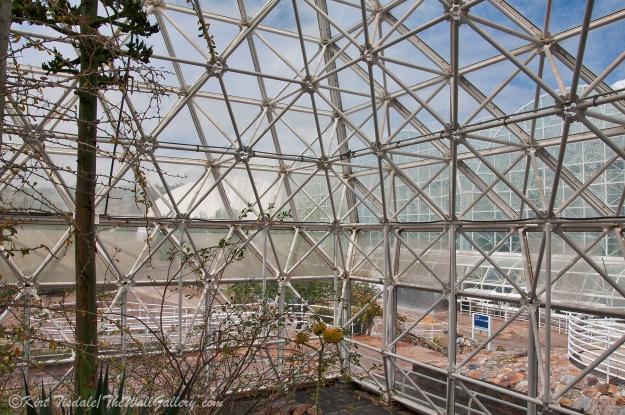 Biosphere 10