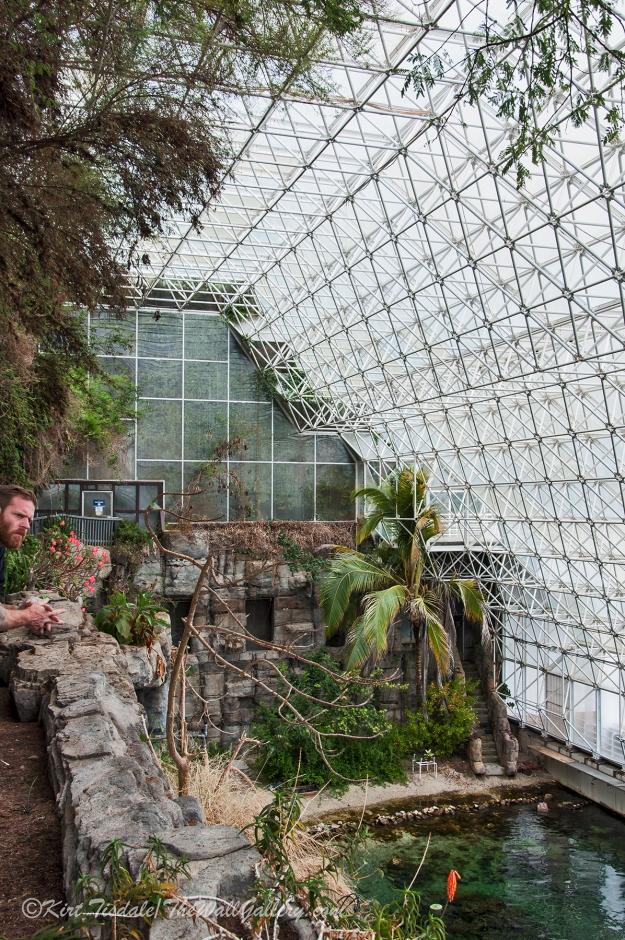 Biosphere 8