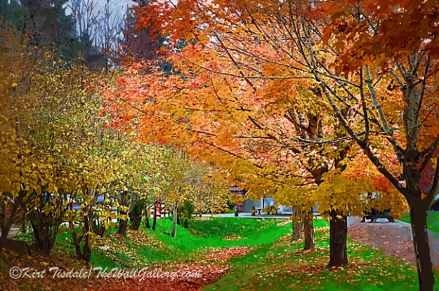 Autumn Colors: a wall art print where I used an impasto oil technique creating this scene. This technique uses bold brush strokes and bright color tones creating a traditional oil painting look. This particular wall art print depicts trees in a park at their peak of fall colors. The setting is Issaquah, Washington located in the foothills of the Cascade Mountain range to the east of Seattle. Once a small stop along the rail line between Seattle to the west and North Bend in the Cascade Mountains to the east, this town has become a thriving and vibrant suburb within the metropolitan area of Seattle. When you are considering buying an art print, the interior design of the room comes into play and the look you are going for with any given print comes into the decision process. This particular style of wall art print works best in a traditional décor. However, an influencing factor is the framing and matting style, which can dictate what décor the final piece will look good in versus just the style of the art print by itself.