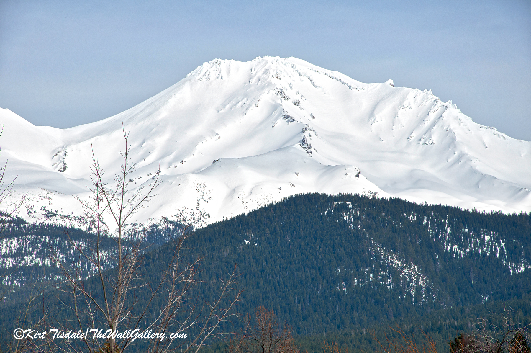 Mount Shasta One